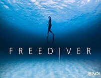 PADI Basic Free Diver & Freediver Courses